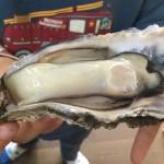 殻付きの牡蠣を簡単に開けて調理する方法