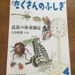 小学4年生にもおすすめです_月刊たくさんのふしぎ_昆虫の体重測定
