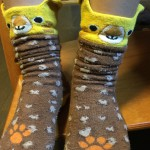 魔の2歳児さんへ はかせやすくてはきやすい可愛い子ども用靴下はこれです